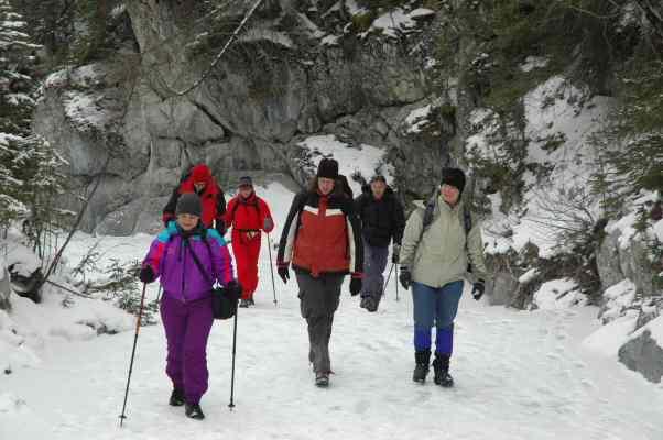 Heart Creek & Grotto Mountain 20 Feb 05 076