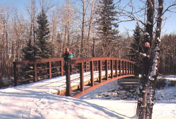 C_J_B_ Fish Creek winter