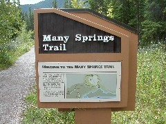 manysprings