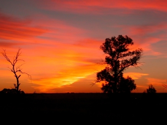 sunset3JPG
